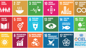 Agenda-2030-ciele-600x308